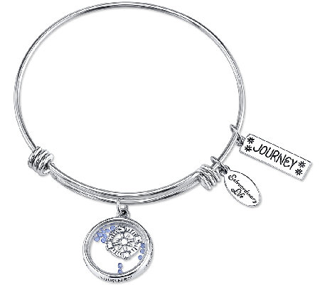 Extraordinary Life Sterling Journey Shaker Charm Bangle