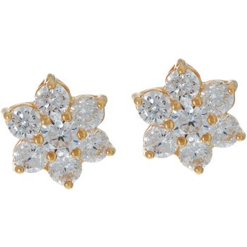 Diamonique Floral Cluster Stud Earrings, Sterling 14K Clad
