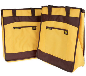 Rachael Ray Set of 2 Therma-Flect ChillOut Totes - K24923