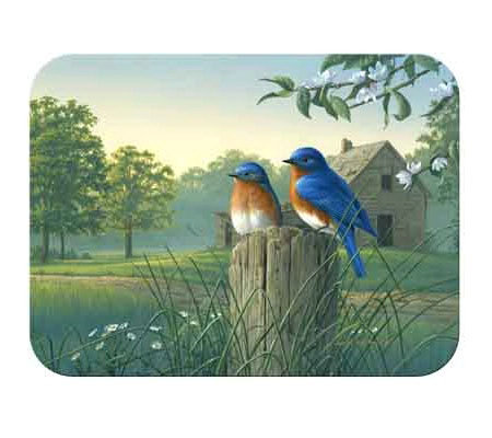 "Tuftop ""Country Morning Bluebirds""Tempered Glass Kitchen Board"
