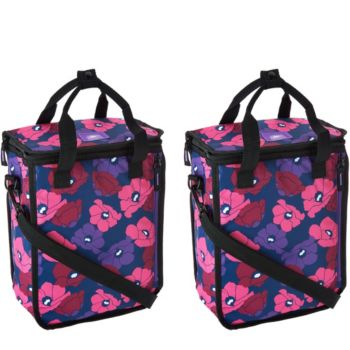 California Innovations Set of 2 Personal Coolers