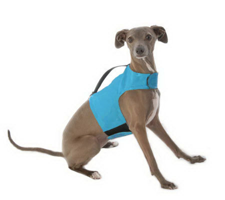 Yap Wrap Choke-Free Body Harness for Small Dogs