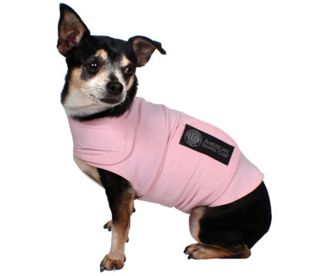 AKC Small Dog Calming Coat