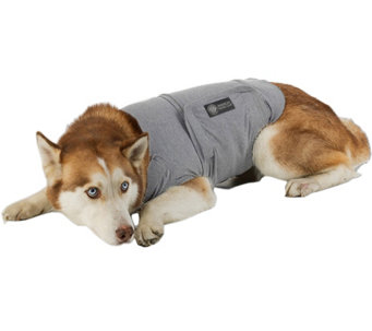 AKC Extra-Large Dog Calming Coat - M115306