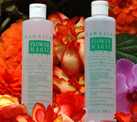 Roberta's 2 Piece Hawaiian Flower Magic Liquid Plant Food
