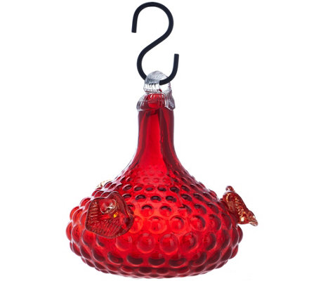 Glass Bell Shape Hummingbird Feeder by Evergreen