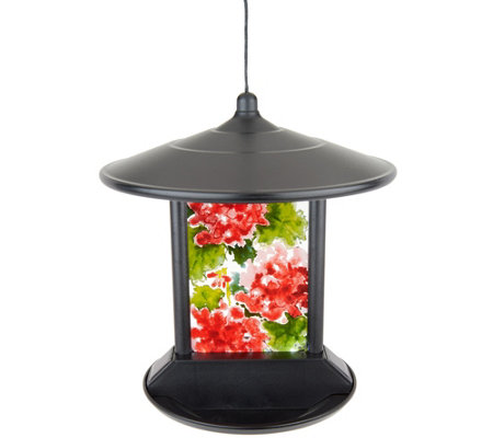 Solar LED Birdfeeder with Decorative Glass Panel by Evergreen
