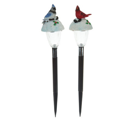 """As Is"" Set of 2 Solar_Holiday Bird Pathway Lights"