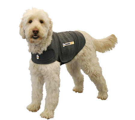 Thundershirt Anxiety Treatment for Dogs