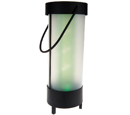 Outdoor Solar Motion Botanical Lantern