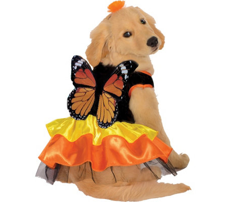 Rubie's Monarch Butterfly Pet Costume-Large