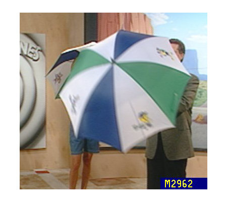Warner Bros. Looney Tunes Golf Umbrella