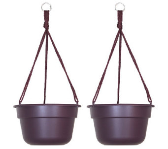 "Bloem 10"" Dura Cotta Hanging Basket, 2-Pack - M114465"