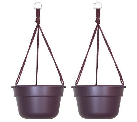 "Bloem 10"" Dura Cotta Hanging Basket, 2-Pack"