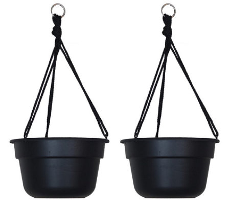 "Bloem 12"" Dura Cotta Hanging Basket, 2-Pack"