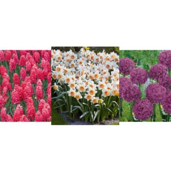 Roberta's 215-piece Showstopping Spring Garden Collection