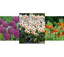 Roberta's 187-piece Beautiful Blooms of Spring Garden - M54977