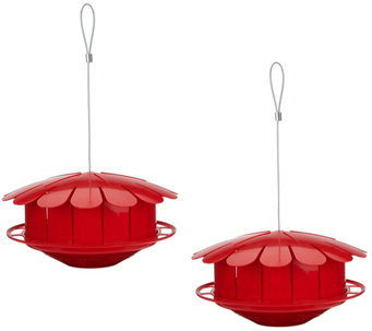 Set of 2 Humm-Bug Natural Food Hummingbird Feeders - M49778