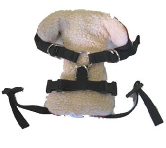 Vehicle Safety Harness - Extra Large - M109688