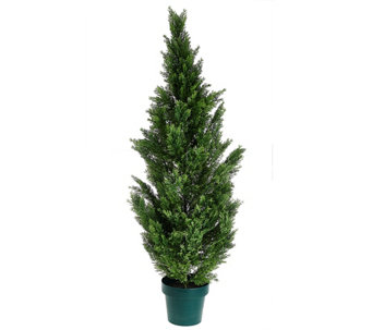 "National Tree Feel Real 63"" Cedar Tree with Growers Pot - M49196"