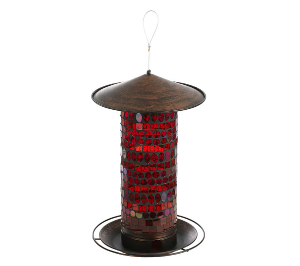 better bird seed bottle homes lovers nature hanging design gardening feeding gardens feeder diy