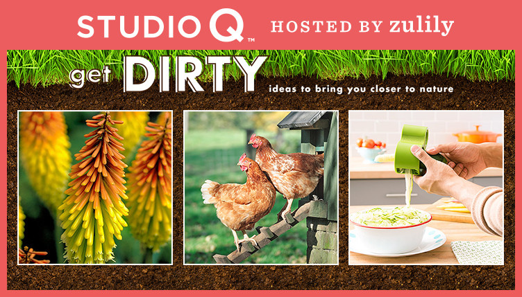 Shop studio-q.zulily.com