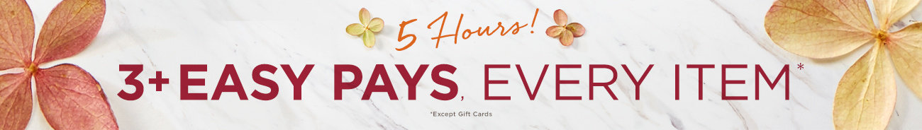 5 Hours!  3+ Easy Pays, Every Item Except Gift Cards