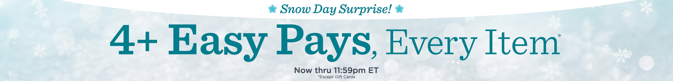 Snow Day Surprise! Now thru 11:59pm ET! 4+ Easy Pays, Every Item Except Gift Cards