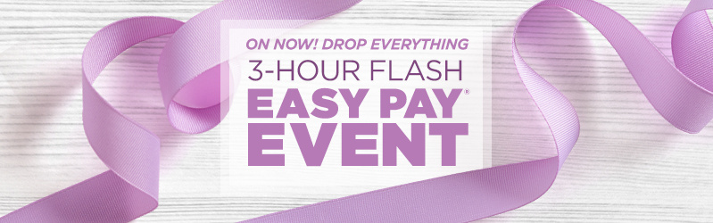 3-Hour Flash Easy Pay® Event