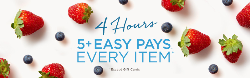 4 Hours, 5+ Easy Pays, Every Item (Except Gift Cards)