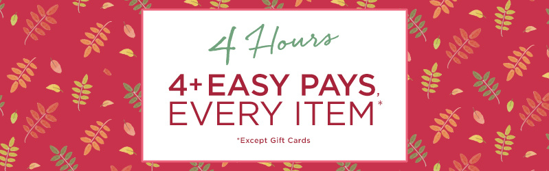4 Hours, 4+ Easy Pays, Every Item *Except Gift Cards
