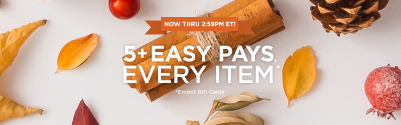 5+ Easy Pays, Every Item Except Gift Cards — Now thru 2:59pm ET!