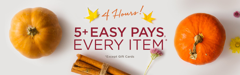 4 Hours! 5+ Easy Pays, Every Item (Except Gift Cards)
