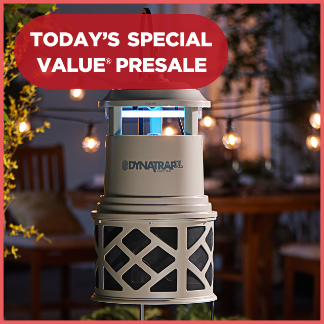Today's Special Value® Presale — DynaTrap® Insect Trap