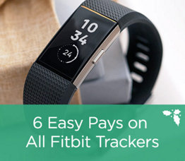 6 Easy Pays on All Fitbit Tracker