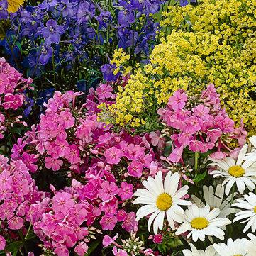 Garden Center — Get ready to grow with a pre-season plan
