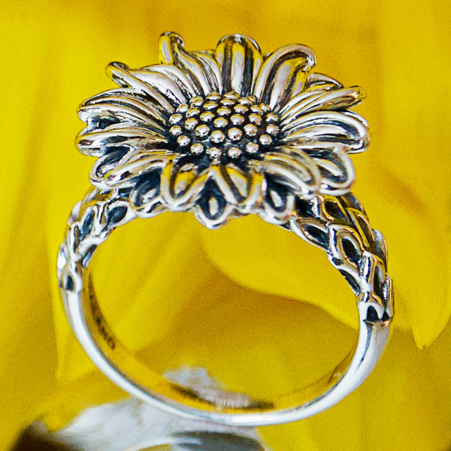 Jewelry: 5+ Easy Pays