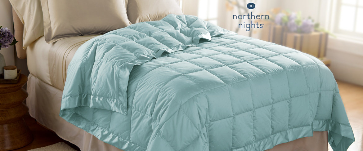 Today's Special Value® — Northern Nights 500TC Hypoallergenic Down Blanket