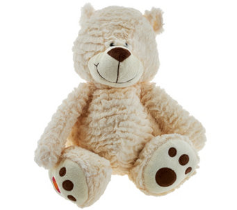 Buddy Balls 3-in-1 Convertible Plush Bear - T34050