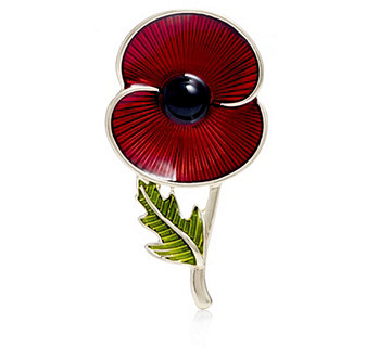 The Poppy Collection Enamel Leaf Brooch by Buckley London - 306945