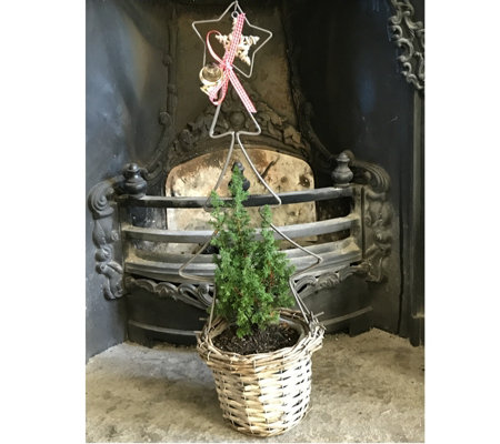 Plants2Gardens Christmas Tree with Frame & Decorative Basket