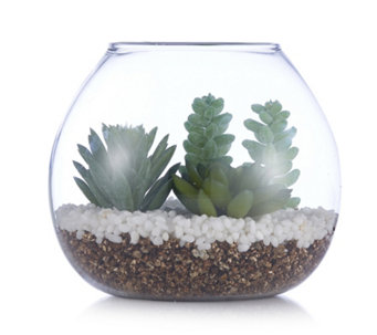 Home Reflections Glass Bowl with Faux Succulent - 706620