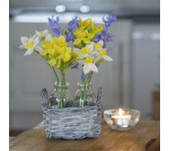 Peony Bluebells & Narcissus in Wicker Basket