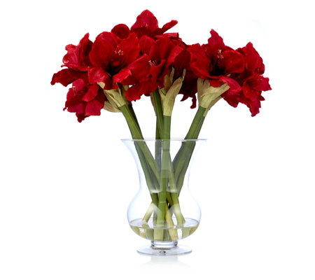 Peony amaryllis in large footed vase for Vase amaryllis