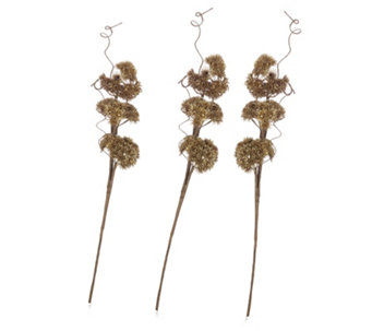 Alison Cork Set of 4 Coral Stems - 706040