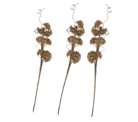 Alison Cork Set of 4 Coral Stems