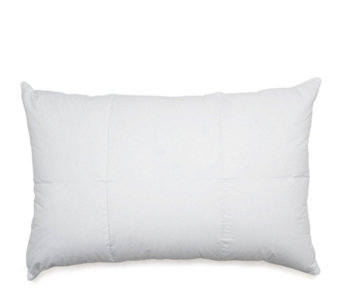Northern Nights Down Filled Pillow Protector - 805272