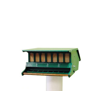 Heritage Farms Bird's Choice Feeder - V105100