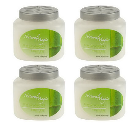 Natural Magic Set of 4 Decorative Odor Absorbing Gel Fragrances