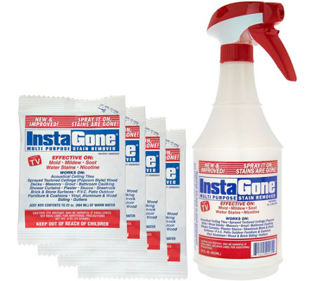 Instagone S/4 Multipurpose Stain Remover & (1) 22 oz. Spray Bottle